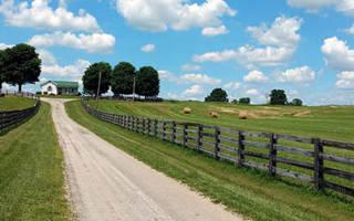 Преобретение земли через аукцион с последующей приватизацией