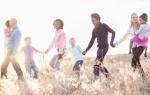 Как нам с внучкой правильно поделить наследство?