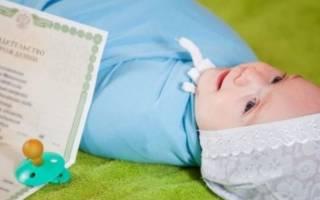 Гражданство новорожденному воронеж