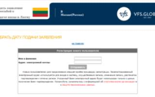 Отслеживание визы нидерланды