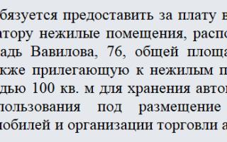 Договор аренды автосервиса с оборудованием образец физическое лицо