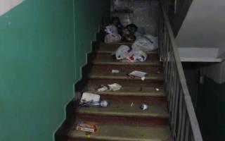 Можно ли выкидывать бытовой мусор в урну у подъезда?