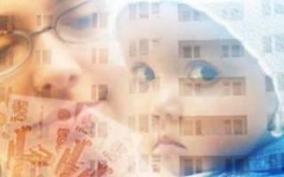 Покупка квартиры через материнский капитал