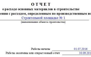 Отчеты переработчика м в строительстве образец