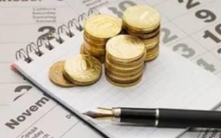 Куда и в какие сроки происходит уплата налогов ИП?