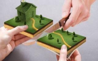 Развод.раздел имущества.нет приватизации земли