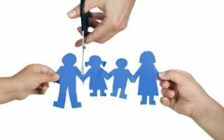 Лишение родительских прав при невыплате алиментов