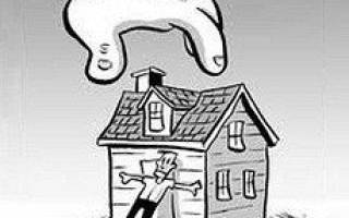 Могут ли без суда приехать описывать имущество у поручителя?