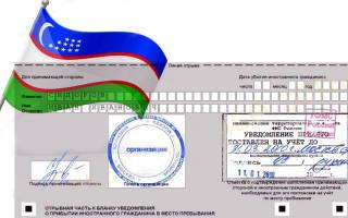 Пакет документов регистрация узбеков в россии