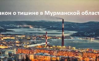 В какое время можно проводить ремонтные работы в Мурманске?
