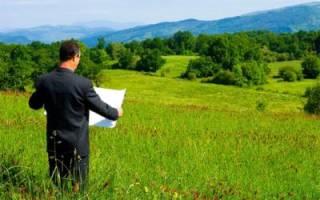 Арендованный земельный участок
